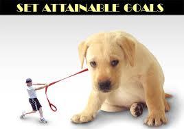 attainable goals