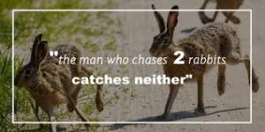 rabbits goal